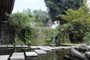 Avalon fish Pool