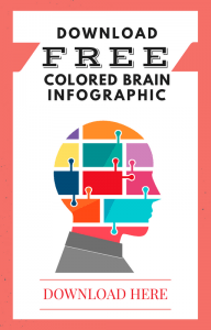 colored brain infographic